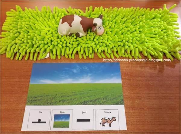 Łąka – odejście od wymiaru 3D do zdania – AAC.
